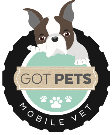 Got Pets Mobile Vet - Serving Northern New Jersey and surrounding areas Call (201) 312-0418 for an appointment!